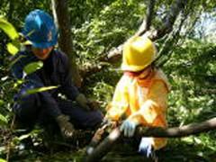 子供も参加できるやさしい森づくり体験