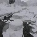 横畑・冬景色