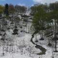 早春の里山