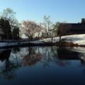 上越市民の森・池