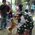 中ノ俣・春祭り・獅子と犬